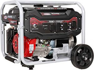Simpson Cleaning portable generator