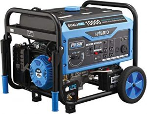 Pulsar PG10000B16 generator for RVs